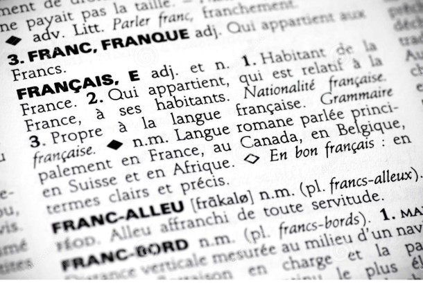 D fendre la langue fran aise un philosophe - Dictionnaire de l office de la langue francaise ...
